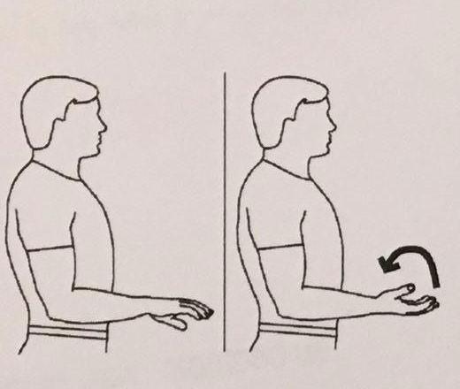 چرخش داخلی و خارجی مچ دست