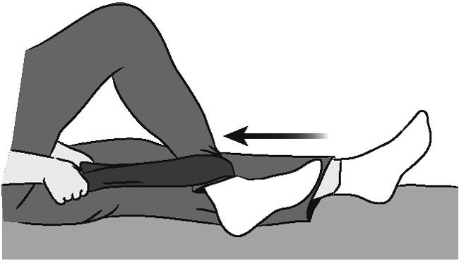 Sitting supported knee bends